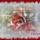 Merry Christmas by wiscbackroadz