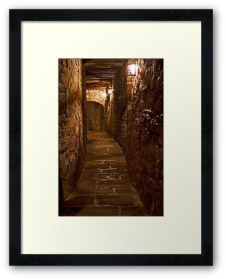 Wine Cellar Walk by phil decocco