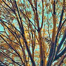 Color Study: Fauvist Composition With Tree and Branches — Version One by Ivana Redwine