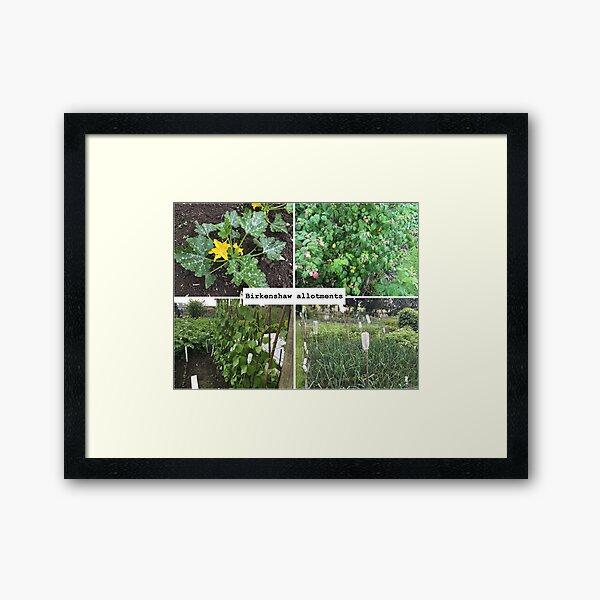 Views of Birkenshaw allotments Framed Art Print