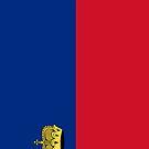 Liechtenstein Flag by pjwuebker