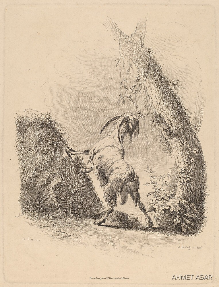 Adam von Bartsch Goat in a Landscape 1805 by MotionAge Media