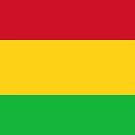 Mali Flag by pjwuebker
