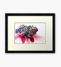 Purple Cadillac Feathers  Framed Print