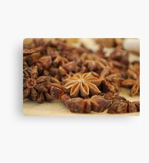 Star Anise nuts Canvas Print