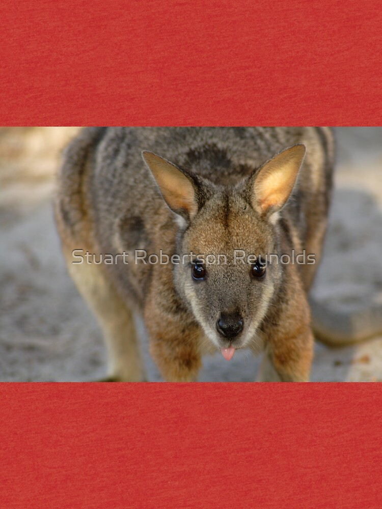 Tammar Wallaby by Sparky2000