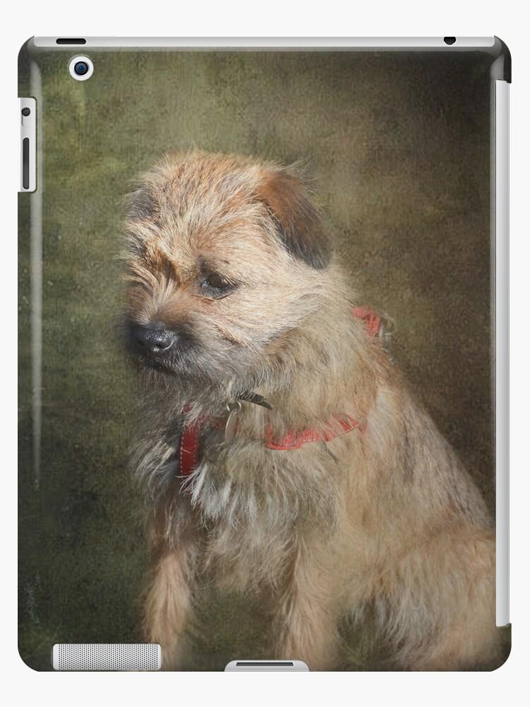 Border Terrier iPad Case by Carol Bleasdale