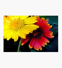 Yellow and red impact Photographic Print