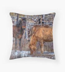 Furry Colts Throw Pillow