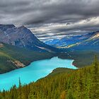 Roof over Peyto by James Anderson