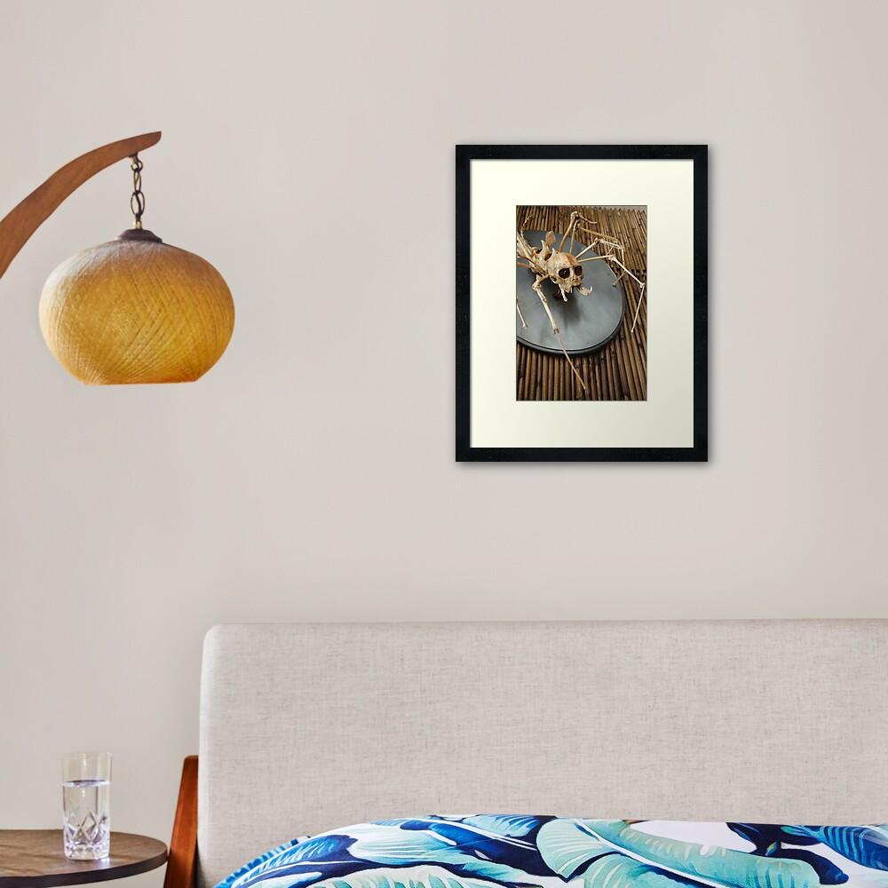 spider monkey taxidermy photograph Framed Art Print
