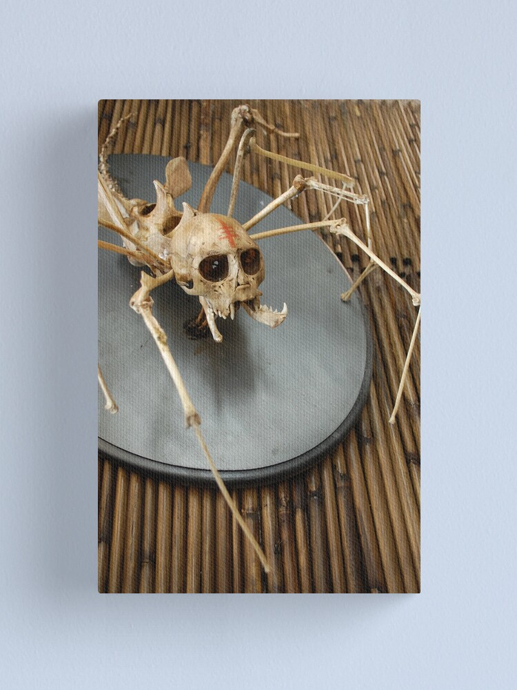 Alternate view of spider monkey taxidermy photograph Canvas Print