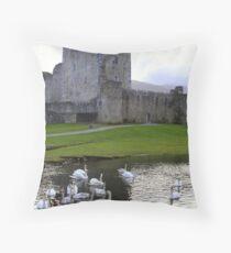Ross Castle, Killarney Throw Pillow