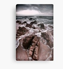 The Black Sea Metal Print