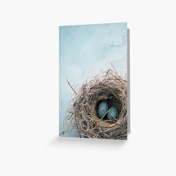 Blue Nest Greeting Card