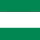 Nigeria Flag by pjwuebker