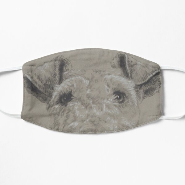 Wire-haired Fox Terrier in Graphite Mask