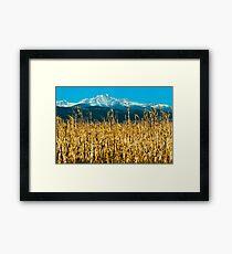Winter Corn Fields and Longs Peak Framed Print