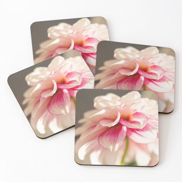 Dahlia Coasters (Set of 4)