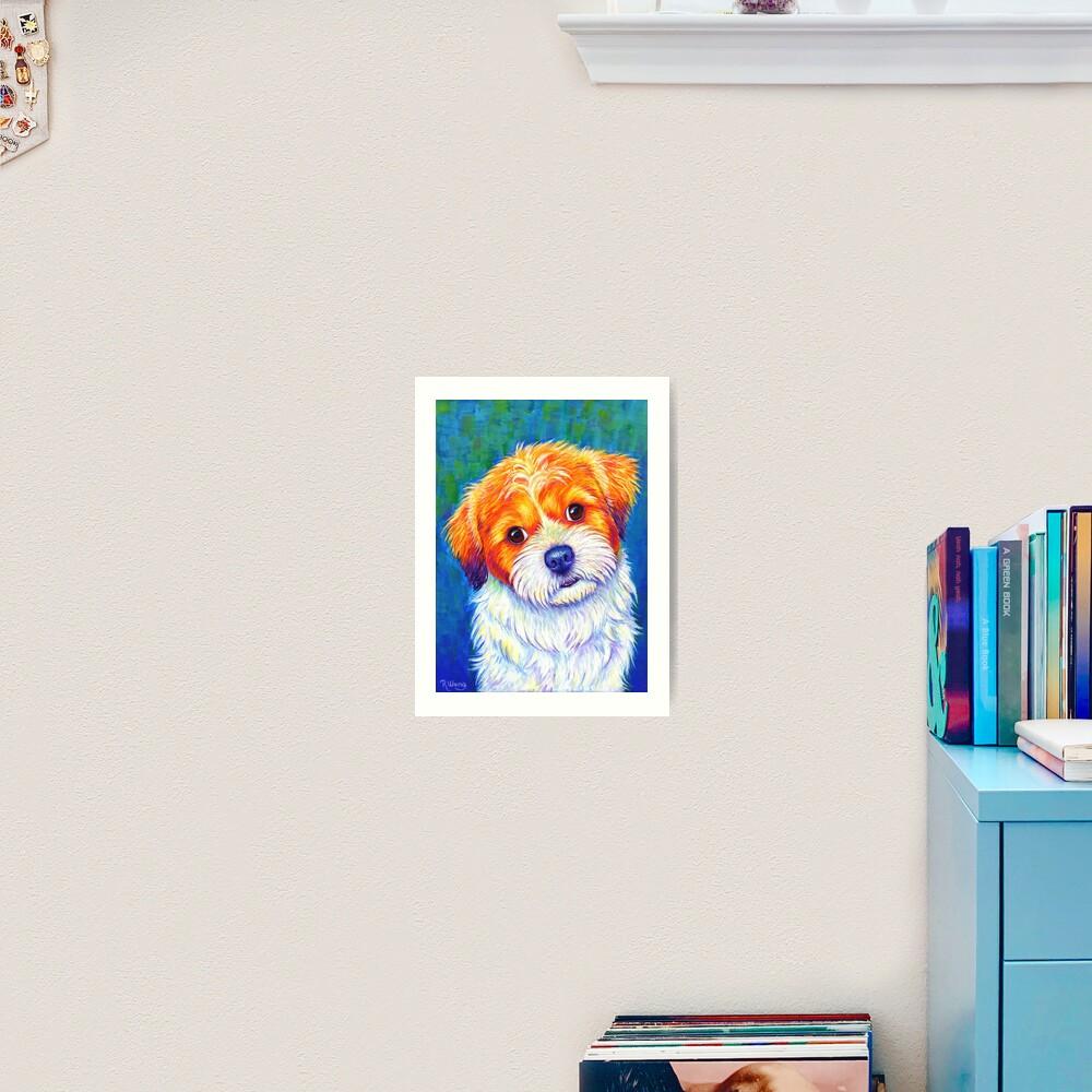 Curious Shih Tzu Colorful Cute Dog Art Print
