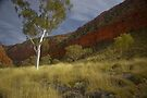Ormiston Gorge and Pound, Northern Territory by fotosic