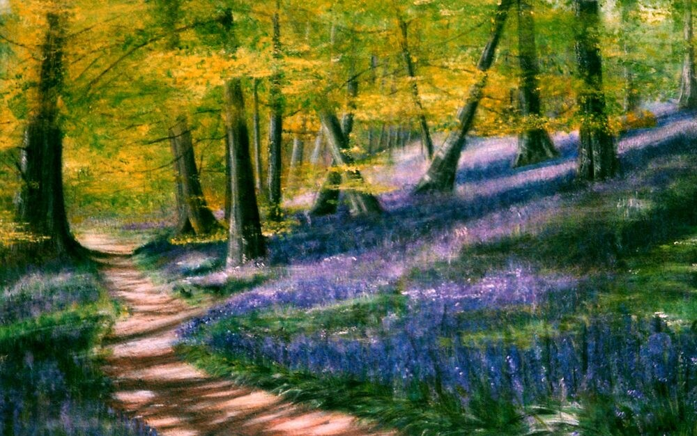 Bluebell Wood by Lynn Hughes