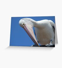 Pelican Bow Greeting Card