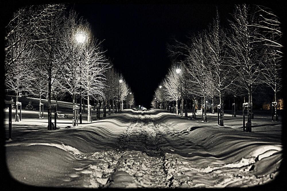 Helsinki - Kaivopuisto by Michal Tokarczuk