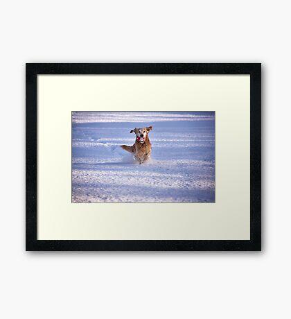 Joy unlimited Framed Print