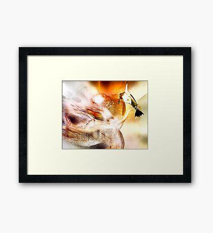 Angelstone  Art Framed Print