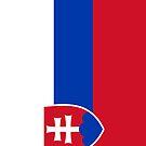 Slovakia Flag by pjwuebker