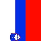 Slovenia Flag by pjwuebker
