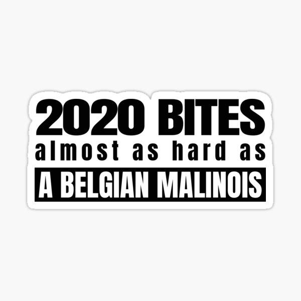 2020 Bites Belgian Malinois   Sticker