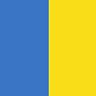 Ukraine Flag by pjwuebker