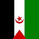 Western Sahara Flag by pjwuebker
