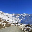 Going up the Mountain by NinaJoan