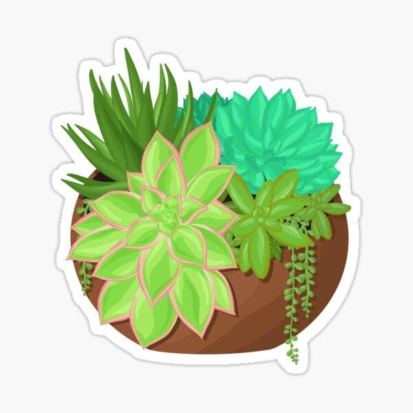Succulent Planter Sticker