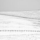 Snowscape, South Downs National Park, England by strangelight
