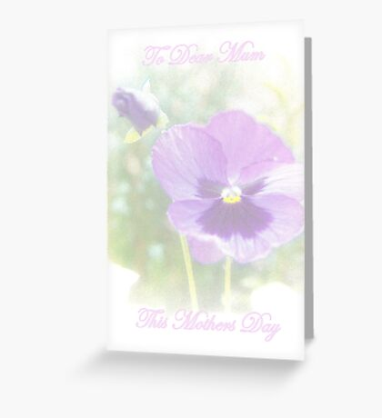 Mothers Day Pansies Greeting Card