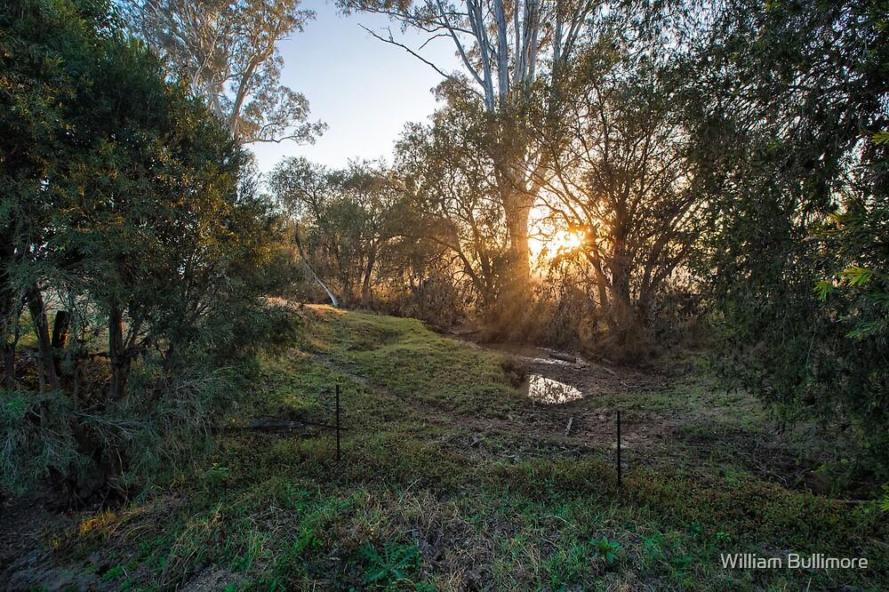 Mt Tamborine Sunrise by William Bullimore