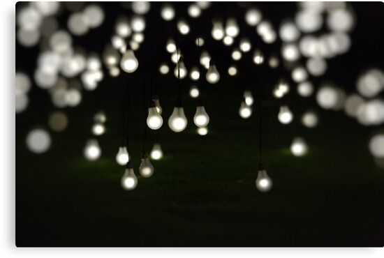 Light Display Art - King's Park Botanical Garden, Perth by Sandra Chung