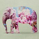 cherry blossom elephant by Vin  Zzep