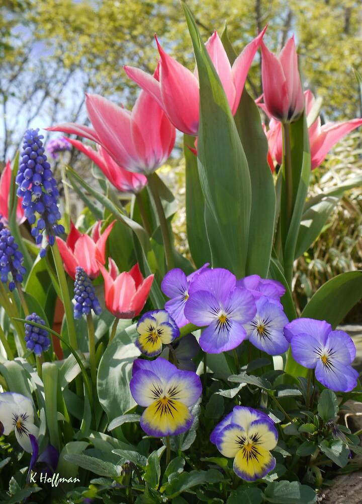 Happy Spring by Kenneth Hoffman