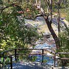 Fernhook Falls by Eve Parry