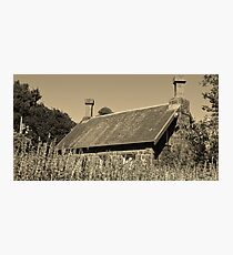 Back to the past   A Cottage in the Gardens Photographic Print