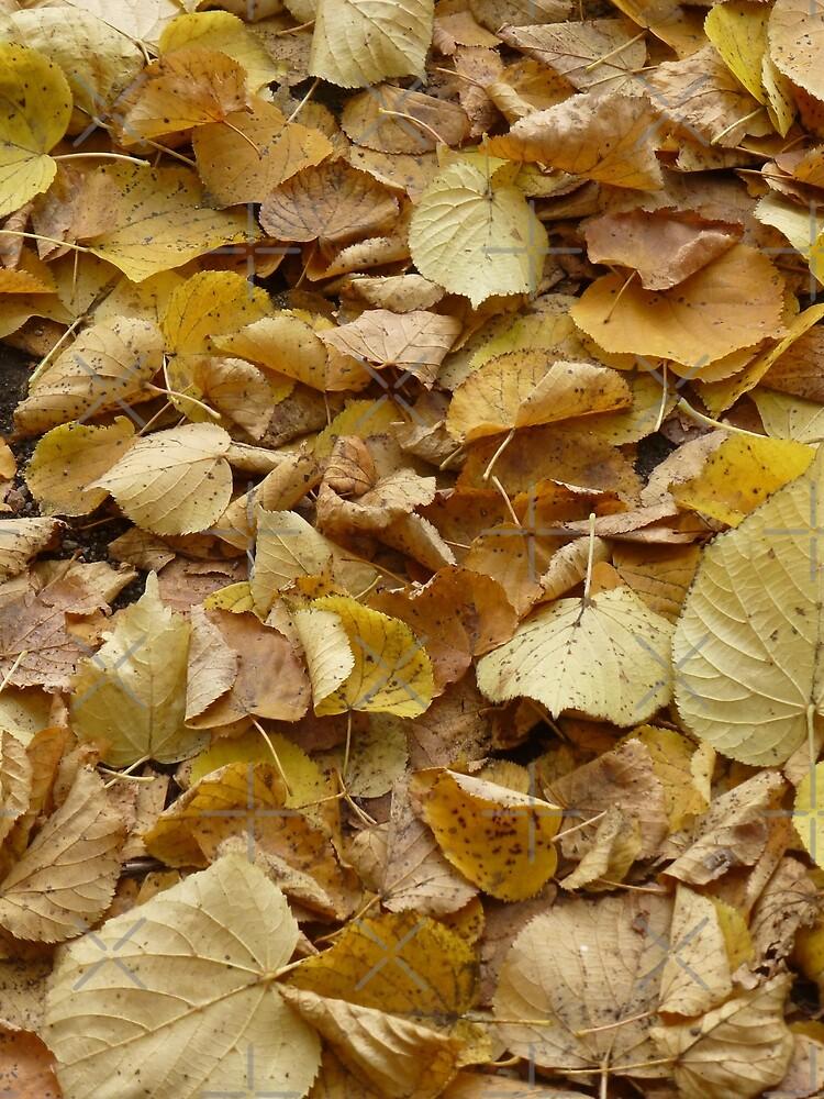 Autumn Fall Leaves Photography by JoyAndValorLife