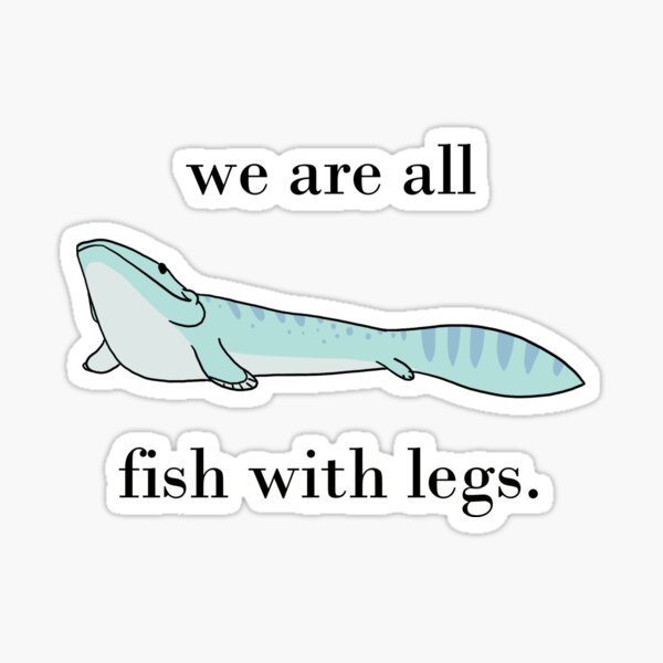 We are all fish with legs Sticker