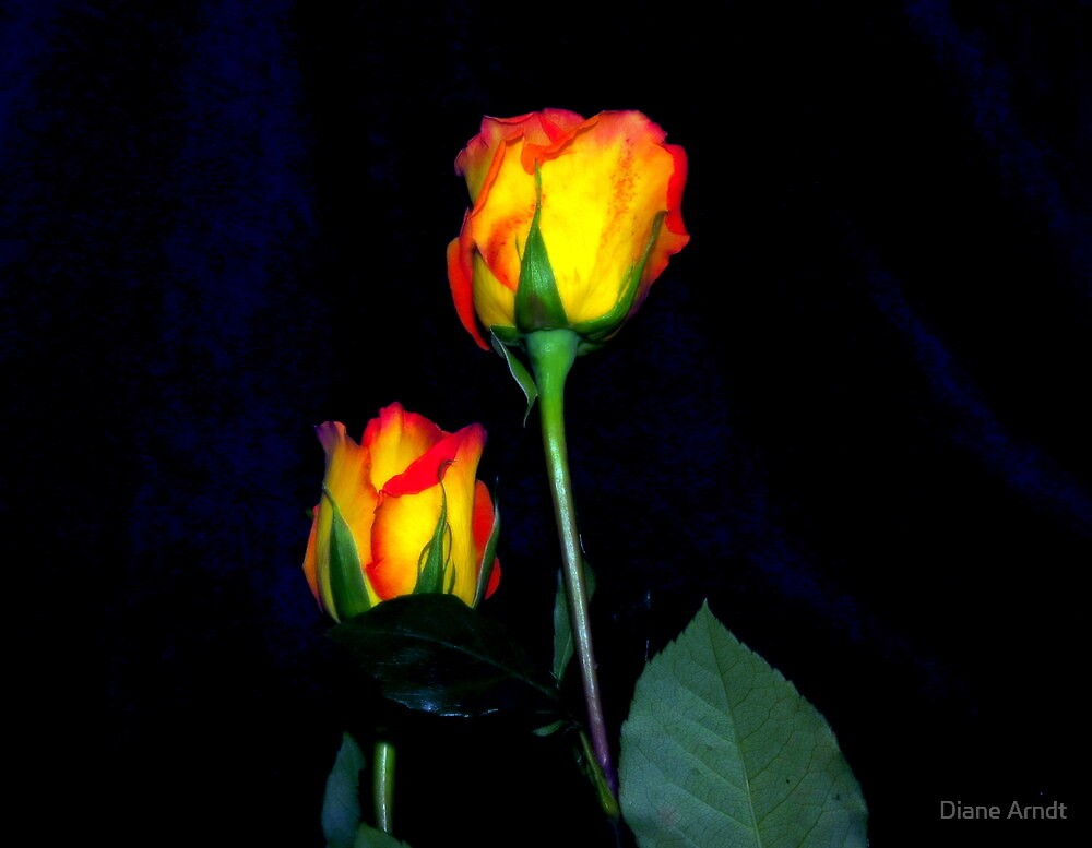 Beside Myself by Diane Arndt