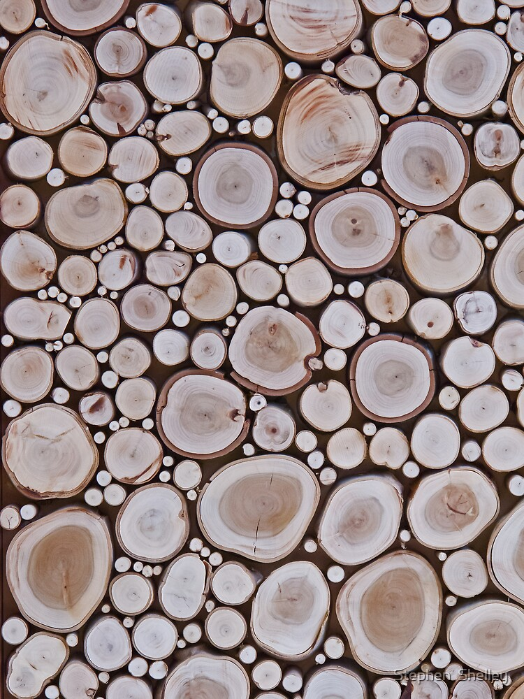 Timber Background by Stephen  Shelley