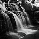 Liffey falls by liza1880